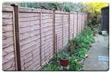 pictures of Fence Panels Concrete Posts