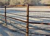 Fencing Panels For Horses photos