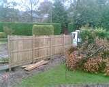 Fence Panels Cumbria pictures