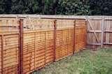 Trellis Fence Panels photos