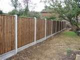 images of 6 Foot Fence Panels