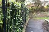 pictures of Fence Panel Cannock